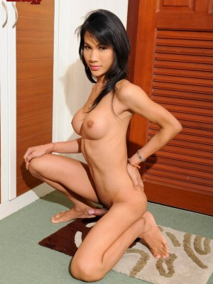 stunning-ladyboy-babe-strokes-her-cock-until-she-oozes-cum-8