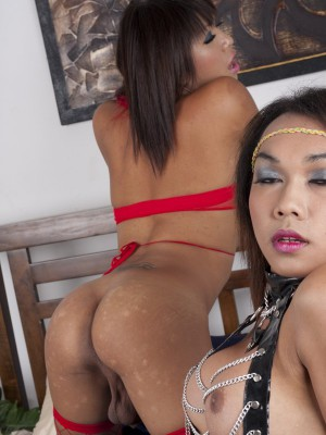 two-asian-ladyboys-in-lace-and-fishnets-fucking-each-other-5